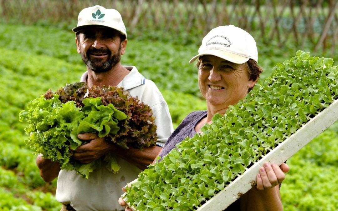 Programa Paulista da Agricultura de Interesse Social – PPAIS.